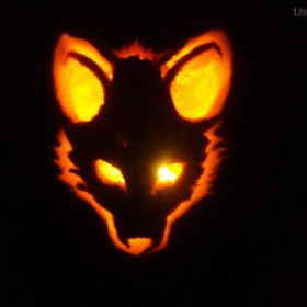 Pumpkin Fox